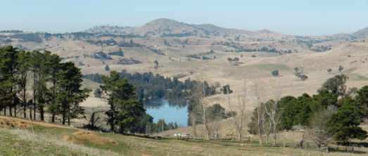 View from Adnamira pine break across river 2011