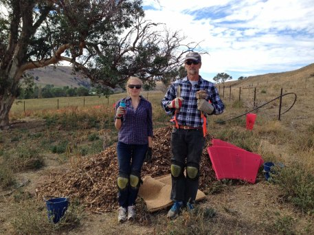 American Gothic Millie and Tom with mallet and mycorrhizae