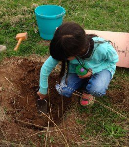 Laila planting 2