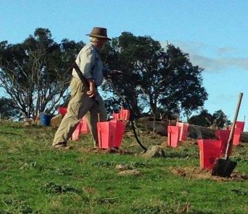 Craig watering Adnamira dam area