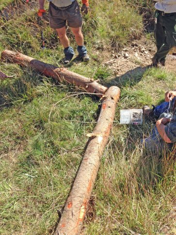 erosion control brush V log supports being wired together