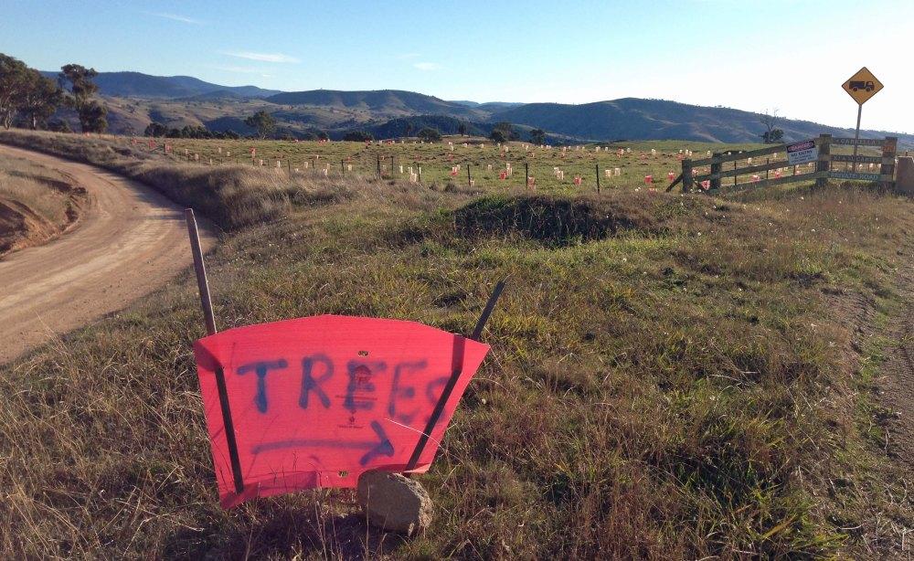 Planting sign