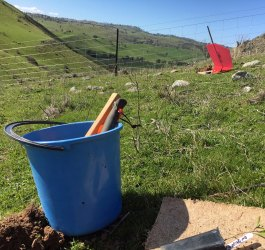 bucket-esdale-windbreak