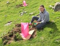 pia-planting