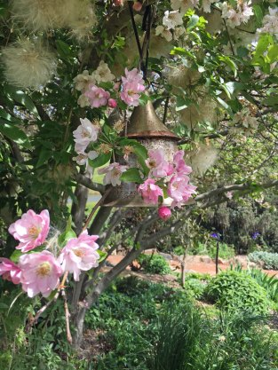 blossom-and-bell