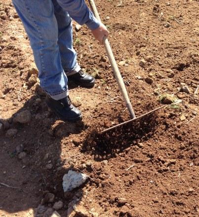 Craig raking topsoil Nov 2015