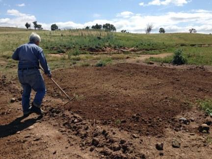 Raking out topsoil area Nov 2015