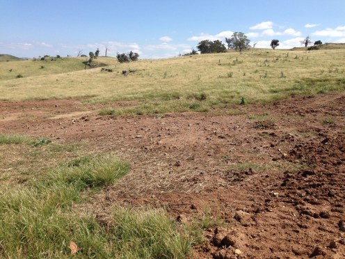 Topsoil area Nov 2015