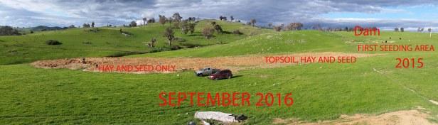 Panorama planting Sept 2016