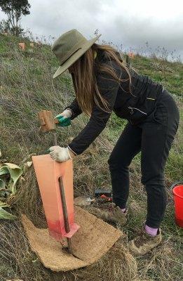 hammering stake