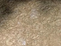 curdled water