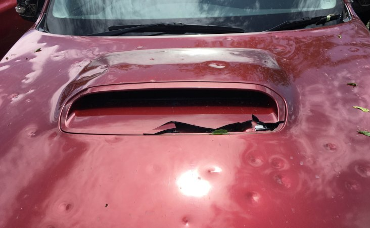 dimpled car bonnet