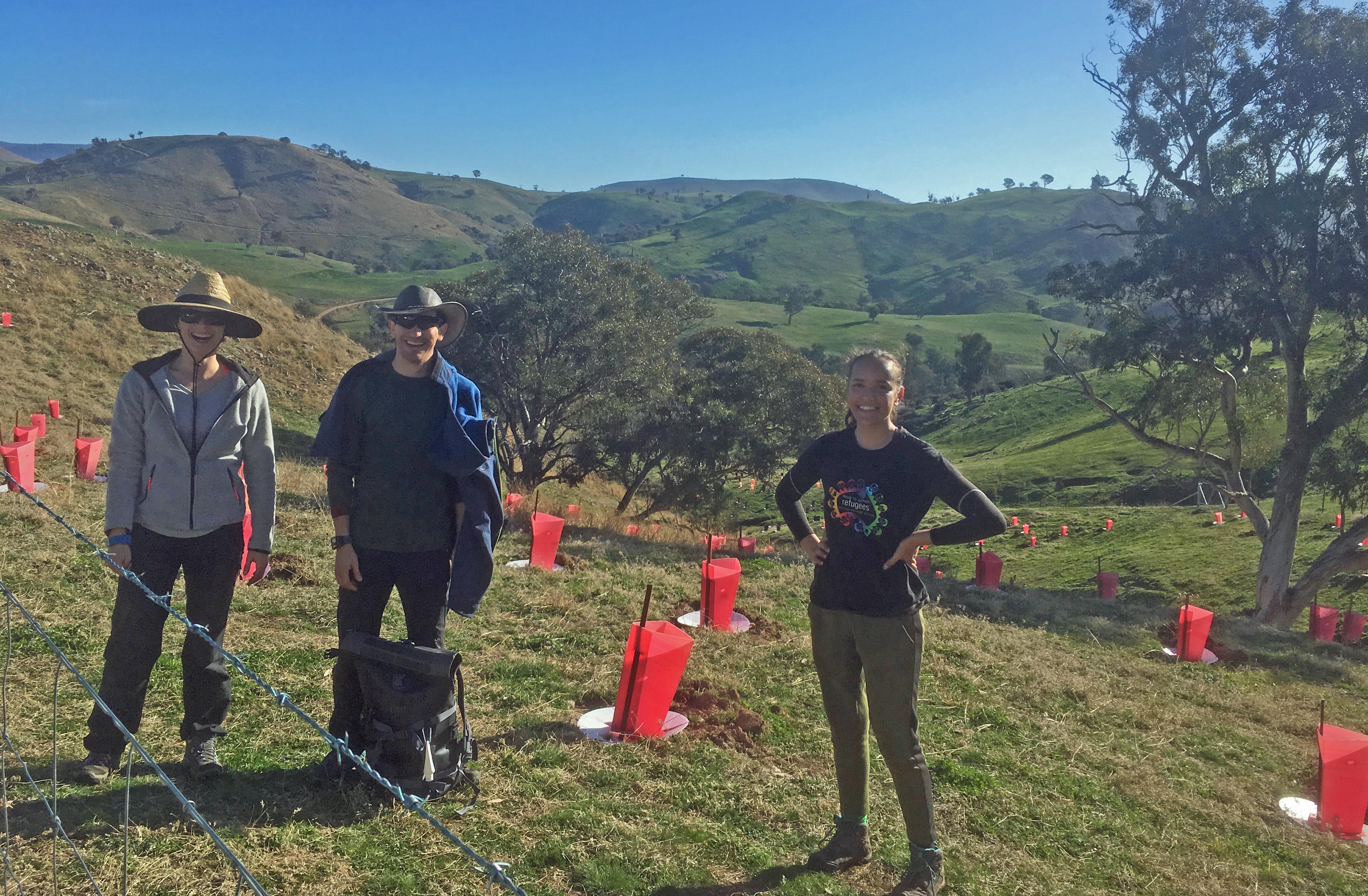 gully planting team 2020